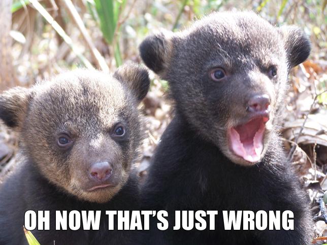 thats_just_wrong_bears